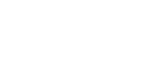 Snow & Shadows Logo